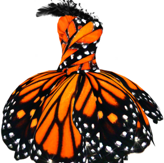 Butterfly dress--quinceanera