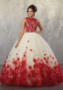 697f07cba77 Designing a Red Roses Quinceanera Theme - My Perfect Quince